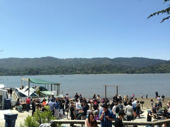 Tomales Bay State Park: View from our picnic table