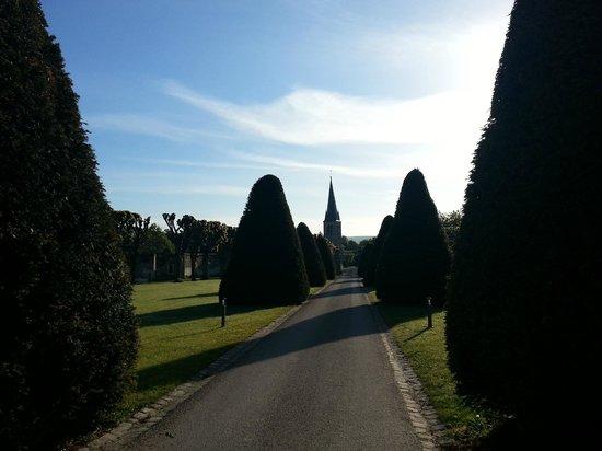 Domaine du Tremblay : Driveway