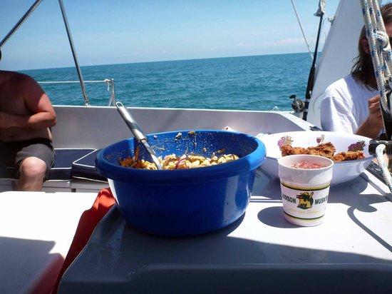 Daytripper Catamaran Charters: Lunch