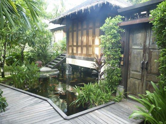 Anantara Rasananda Koh Phangan Villas : Gardens