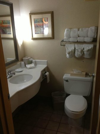 Cleveland Airport Hotel: Clean Large Bathroom