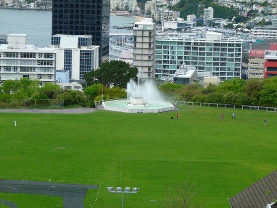 Wellington Botanic Garden: vista desde la cima