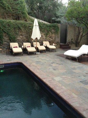Olive Grove: Pool