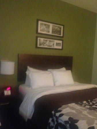 Sleep Inn & Suites Dripping Springs: Beautiful Room!
