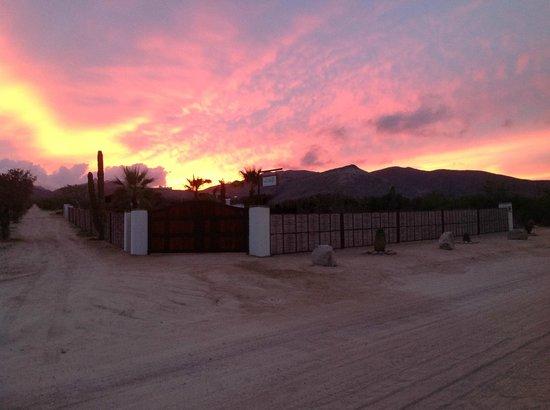 Palapas la Choya : Sunset