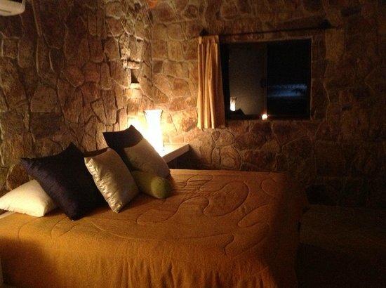 Palapas la Choya : Saguaro and a little moon by the window