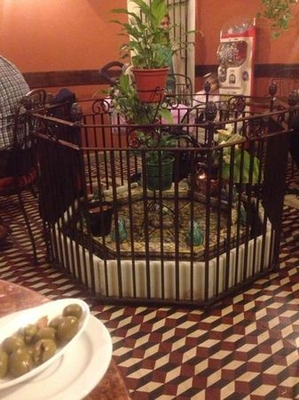 Hotel Zahori Restaurante: charming, cosy interior. check out the frogs!