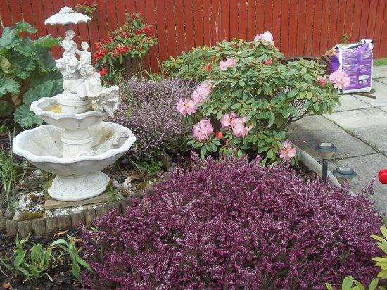 Glenfern Guest House: Lovely Garden
