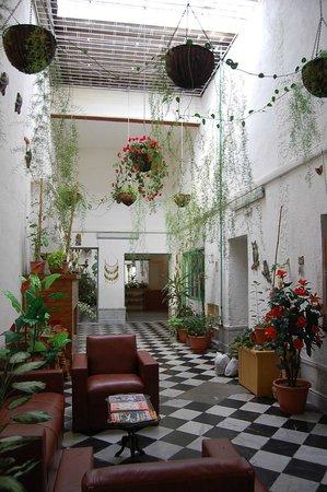 Los Jardines Colgantes de Babilonia Hostel Montevideo: Recepción y estar