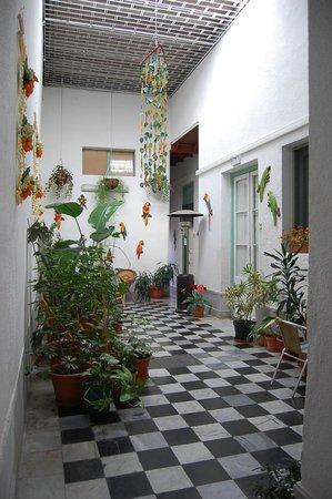 Los Jardines Colgantes de Babilonia Hostel Montevideo: Salita y pasillo