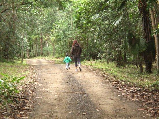 Black Sheep Farm: Walks