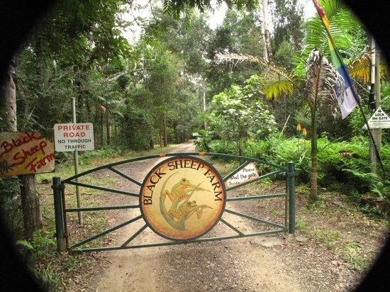 Black Sheep Farm: Front Gate