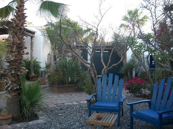 El Angel Azul Hacienda: Garden area