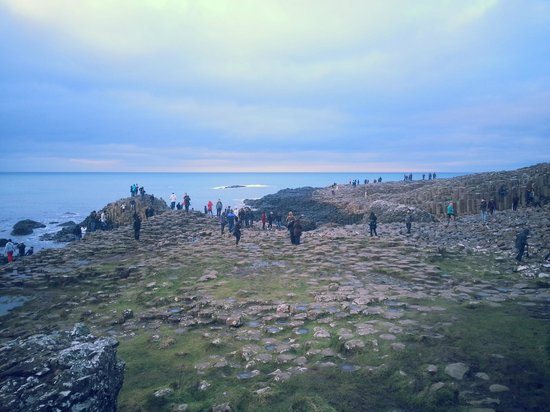 City Sightseeing Derry -  Tour: Giants Causeway