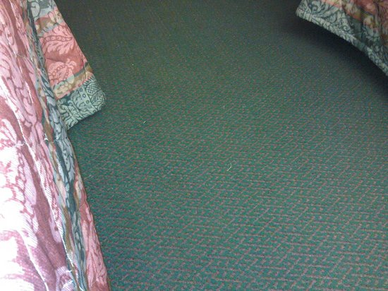 Microtel Inn & Suites by Wyndham Brandon: Floor