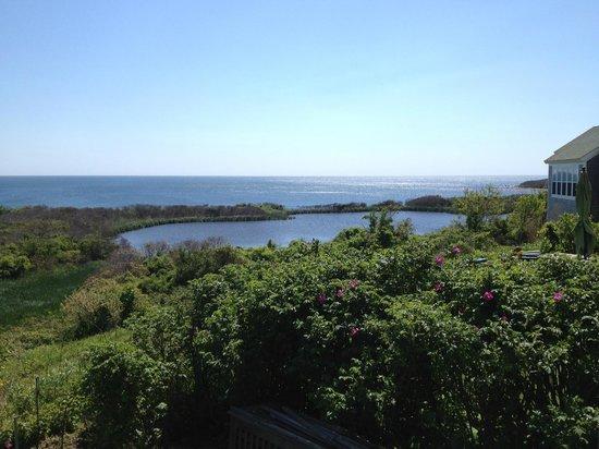 The Sea Breeze: amazing view