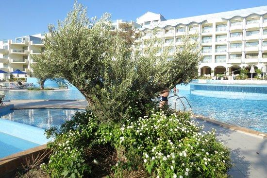 Atrium Platinum Hotel: Beautiful pool