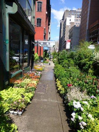 Fairfield Inn & Suites New York Manhattan/Chelsea: Flower market outside of hotel