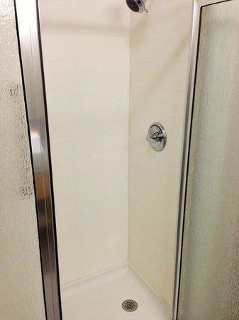 La Quinta Inn & Suites Austin NW/Lakeline Mall: Shower