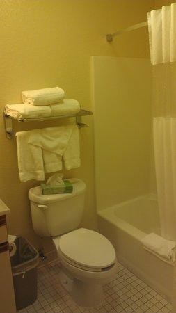 Hawthorn Suites by Wyndham Orlando Altamonte Springs: Bathroom Area