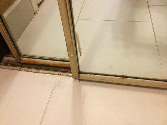 Hyatt Regency Greenville: Rust problems on the closet door