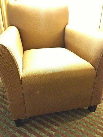 Hyatt Regency Greenville: Stains on chair