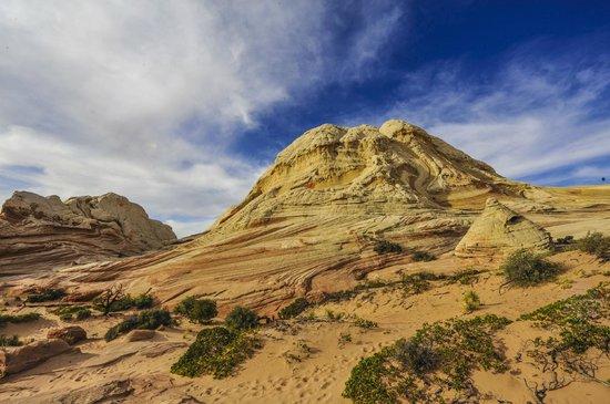 Vermilion Cliffs National Monument : White Pockets in the Vermilion Cliffs