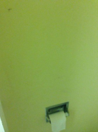 Motel 6 San Antonio Downtown - Riverwalk: The shower curtain was full of something that seemed as blood or poop plus mold