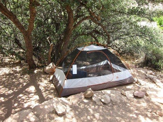 Cottonwood Campground : Campsite 10 shade