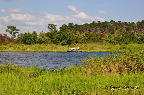 Lake Manatee State Park : To the right of boat ramp!