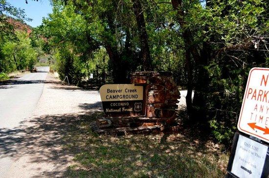 Coconino National Forest: 標識を右手に下りて行きます。