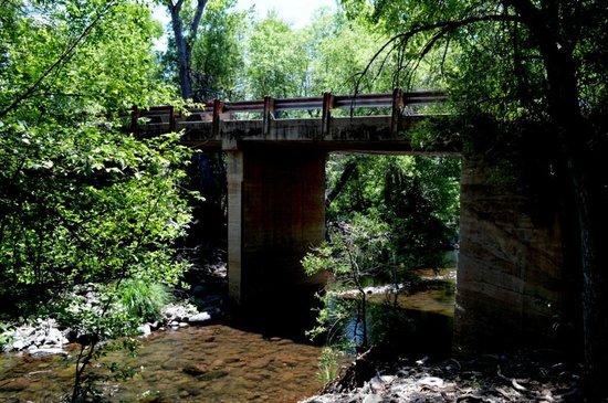 Coconino National Forest: この道路(橋)を走っていて見つけました。
