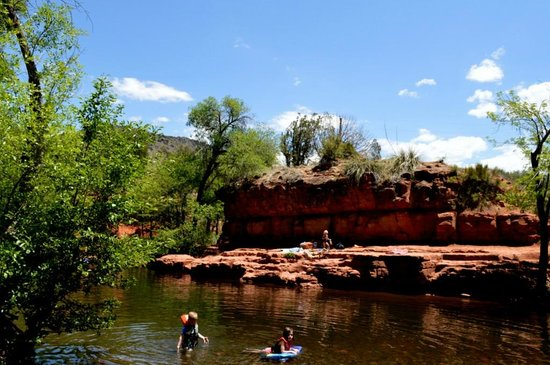 Coconino National Forest: 子供達が水遊びしていました。