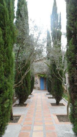 La Bruissanne : Walkway to Wifi outside of Fanny.