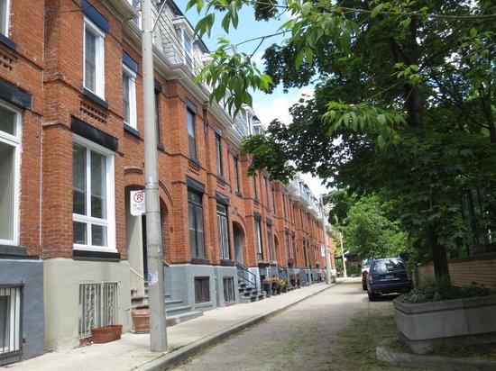داونتاون هوم إن: The lined street where the B&B is.