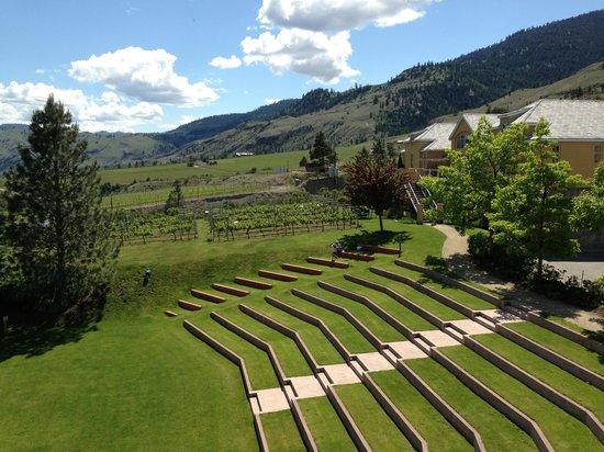 Penticton Sunshine and Wine day tours: Tinhorn Creek Winery