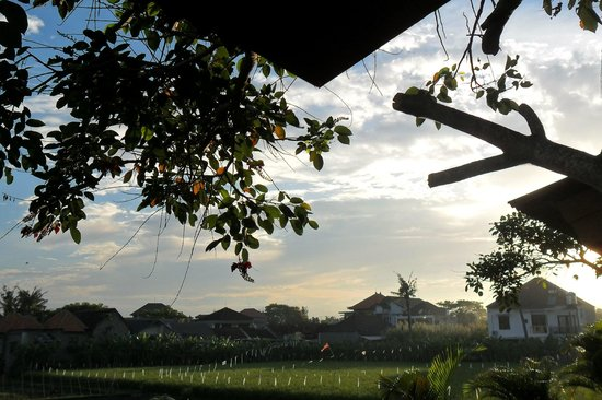 The Studio Bali: Sunrise at the Studio