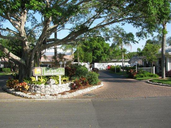 Tropical Beach Resorts: resort grounds