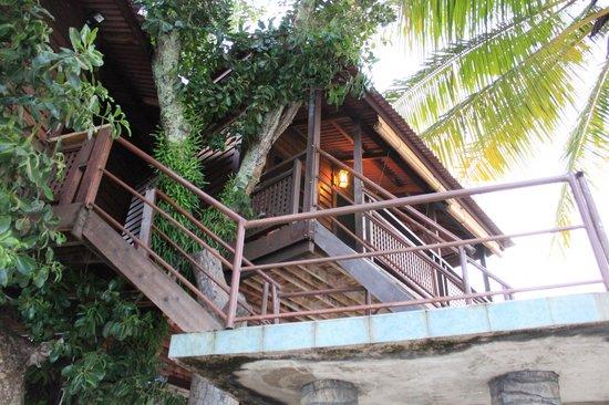 Malibest Resort: Tree House