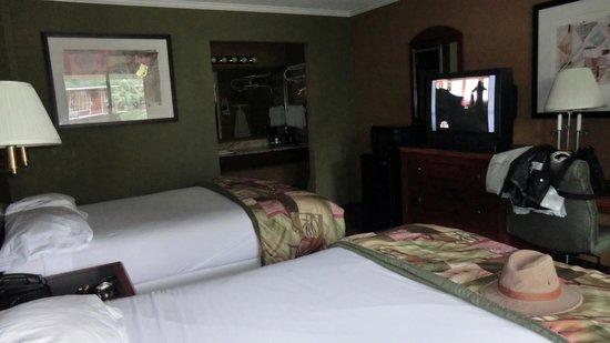 North Charleston Inn : Room 102