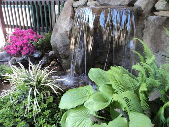 Redwood Hyperion Suites: One of several water features