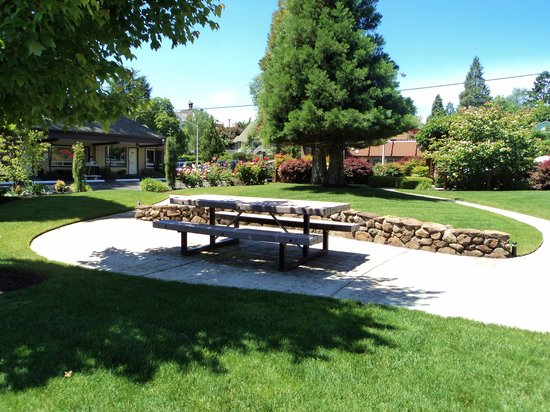 Redwood Hyperion Suites: Yard area