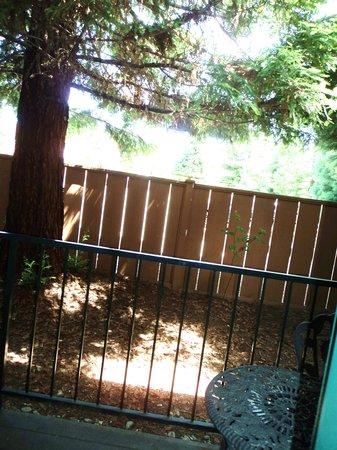 Redwood Hyperion Suites: Patio
