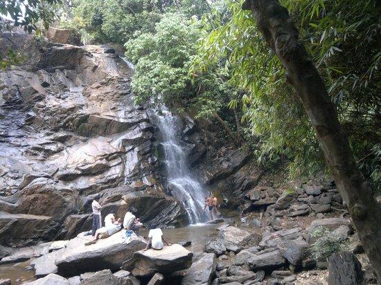 Sringeri, Indien: Sirimane Falls