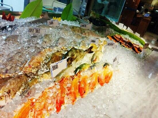 Fishmarket: selection of fresh fish
