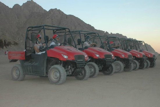 Sharm Alex Tours - Day Tours