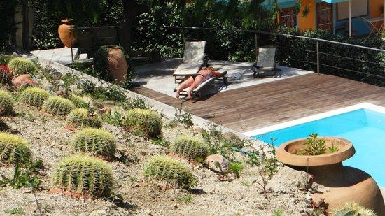 Hotel marina 10 boutique design isola di ischia casamicciola terme prezzi 2017 e recensioni - Bagno gino igea marina ...