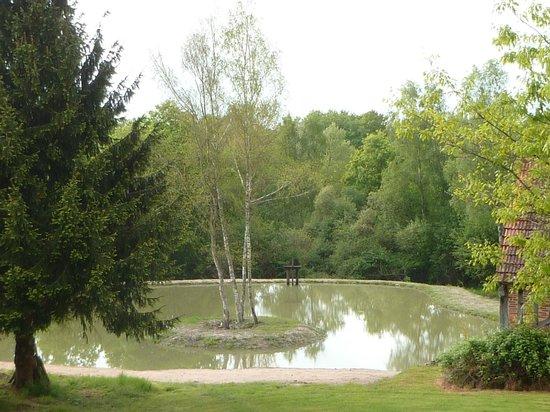 La Ferme des Foucault : petit lac devant la ferme