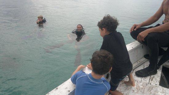 Arrows Dive Centre Bali: Diving
