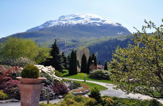Hotel Alexandra: Garden